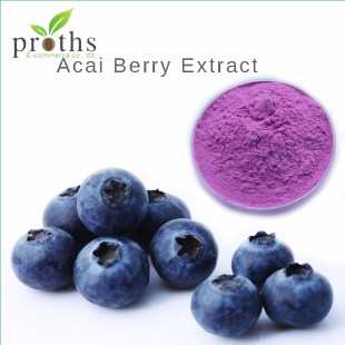 Antioxidants 5:1 acai berry extract <strong>powder</strong>