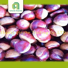 Hot selling organic snack ready to eat chestnuts for wholesales healthy snacks