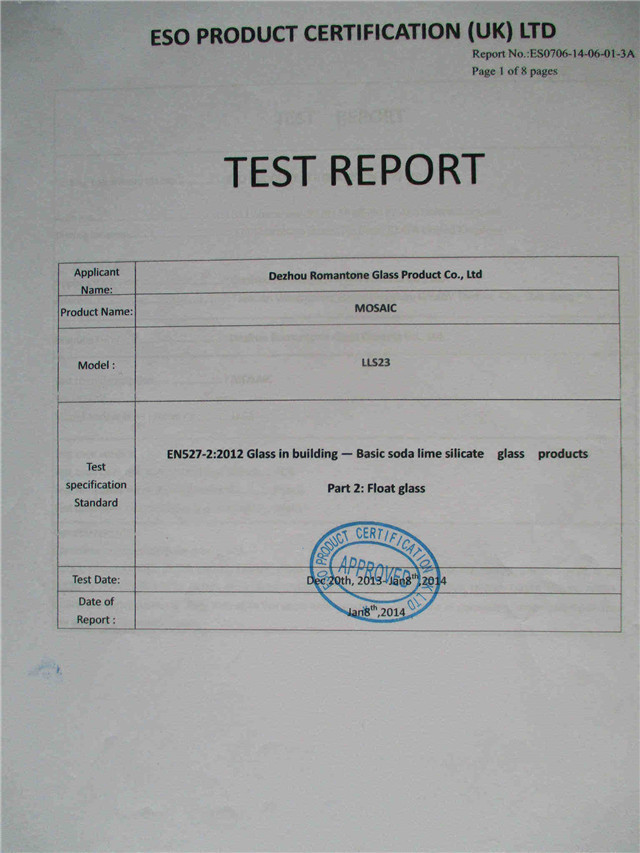 Test Report