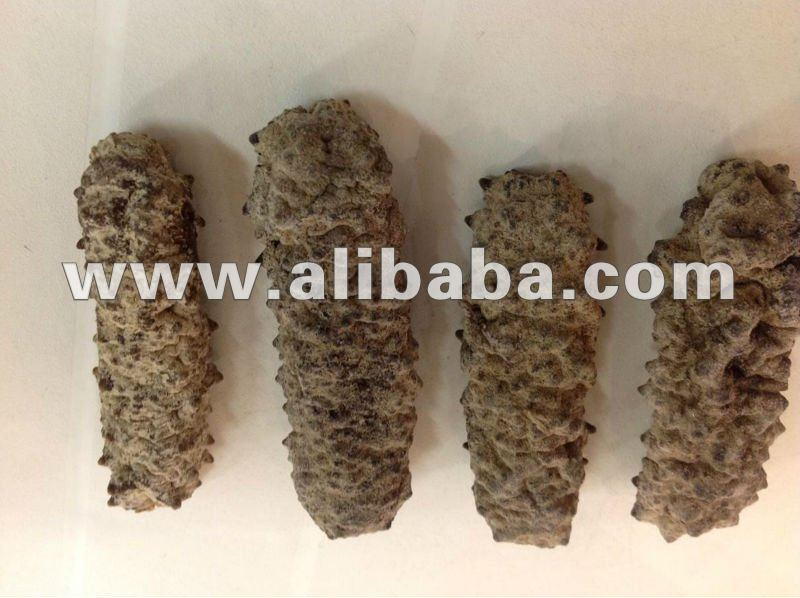 Dried Curry Fish Sea cucumber