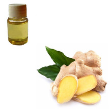 Most Popular Food Seasoning and Condiments 100% Natural Pure Ginger Oil with Good Price