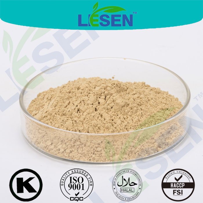High Quality Panax Ginseng Root Extract Powder / Ginsenoside 4% 30% 80% by HPLC / UV