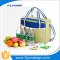 Picnic Time Design Ice Cooler Bag For Frozen Food With Foldable Design