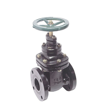long rising stem gate valve