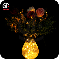 Holiday Decoration 2014 New Items Neon String Lights