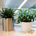 High Quality Customized Fiber Reinforced Plastics Planters for Decoration