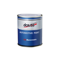 Silver Auto Paint Colors