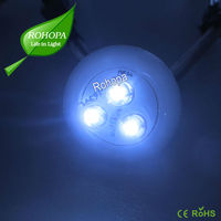 0.24W Strawhat Round 12V 3led waterpoof IP67 module light with CE&RoHs certification