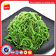 GREEN SEAWEED POWDER/Ulva lactuca