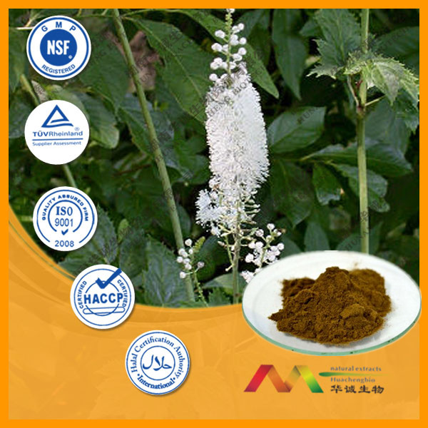 100% Natural Black Cohosh Extract herb(2.5%~5%)