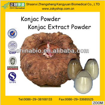GMP Manufacturer supply good quality Konjaku Powder
