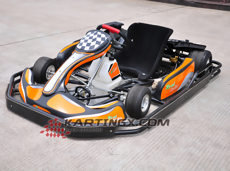CE Approved rental 200cc/270cc racing go kart for adult