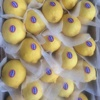 BEST QUALITY BEST PRICE FRESH SEEDLESS LEMON