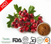 100% Natural Hawthorn Berry Extract, Hawthorn Leaf Extract, Hawthorn Extract powder