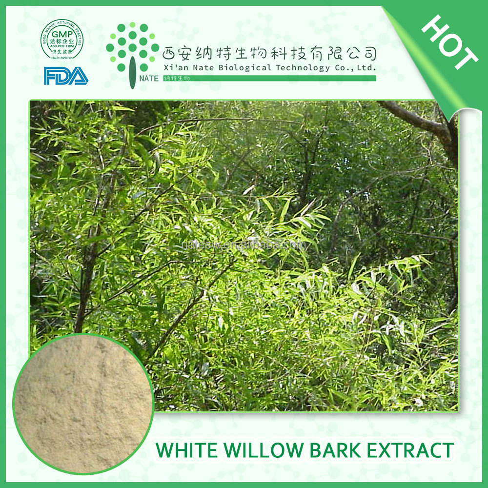 HIGH quality product 98% By Hplc White Willow Bark P.e White Willow Bark extract