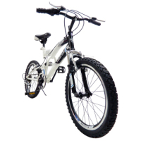 20'' 6 speed 7-9 years old 20'' kid bike sport bike