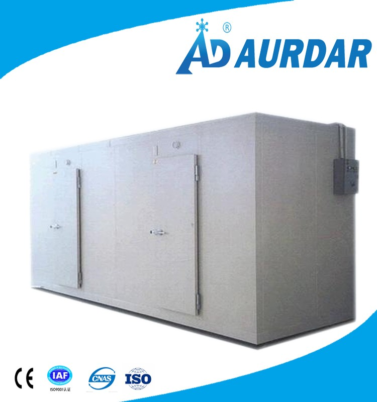 Deep freezer cold room regrigeration condenser unit forIce sculpture with high quality