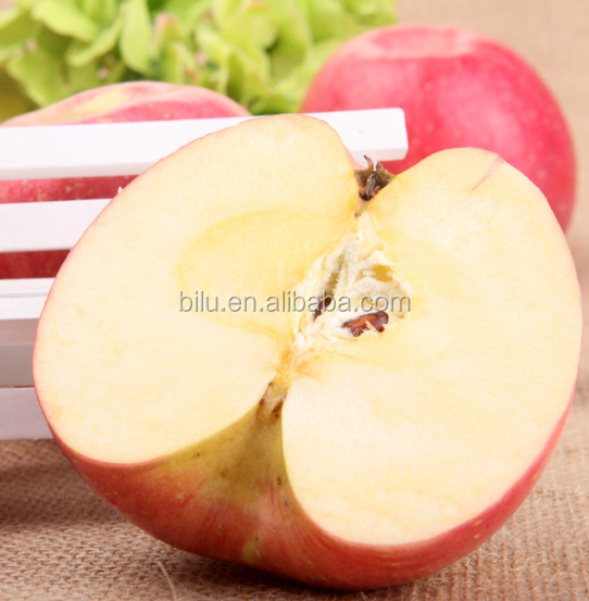 Export Chinese Fruit Grade A Fresh Apple With Best Price