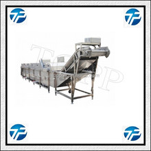 Fruit and Vegetable Air Bubble Washing Production Line