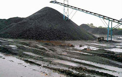 Indonesian Steam Coal GCV 5500/5300--NCV 4000/3800
