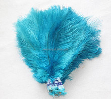 Colorful Carnival Feather Wings For Promotion