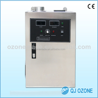 Ozone 30g/h, disinfection space 1000m3 restaurant / hotel ozone generator for odors, exhaust duct, smoke