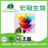 2014 top quality Rainbow roses flower seeds