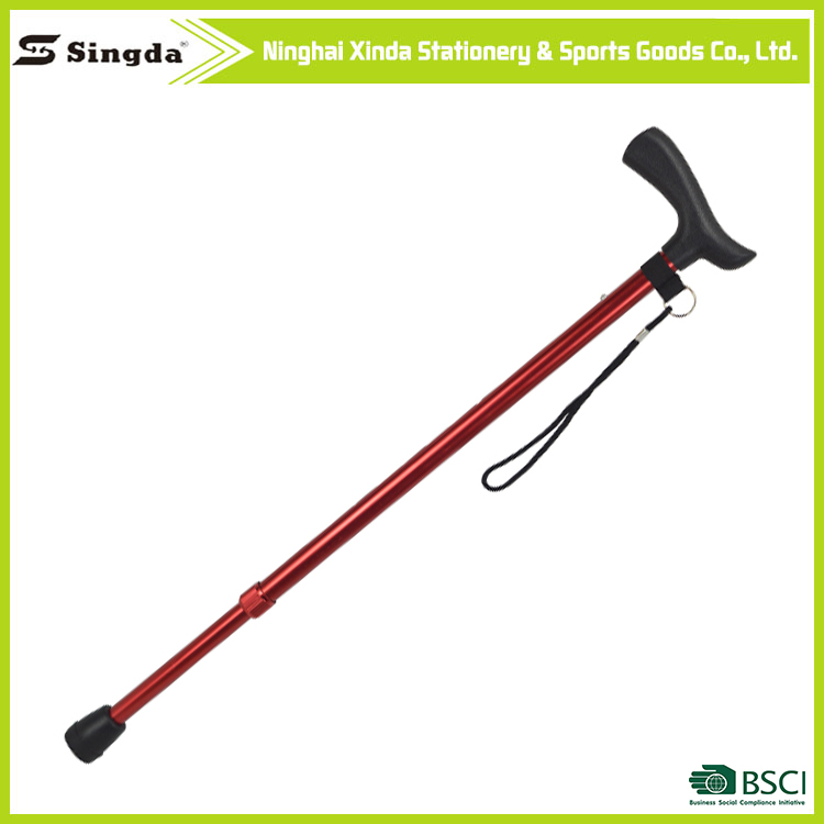 most popular products nordic walking cane