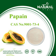 Active ingredient CAS No.9001-73-4 papain enzyme