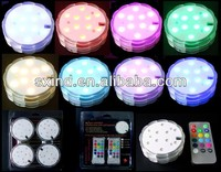 Floralytes Colour Changing Remote Controlled Submersible LED Underwater Light