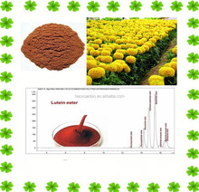 Factory Price Food Grade Marigold Extract Lutein Esters