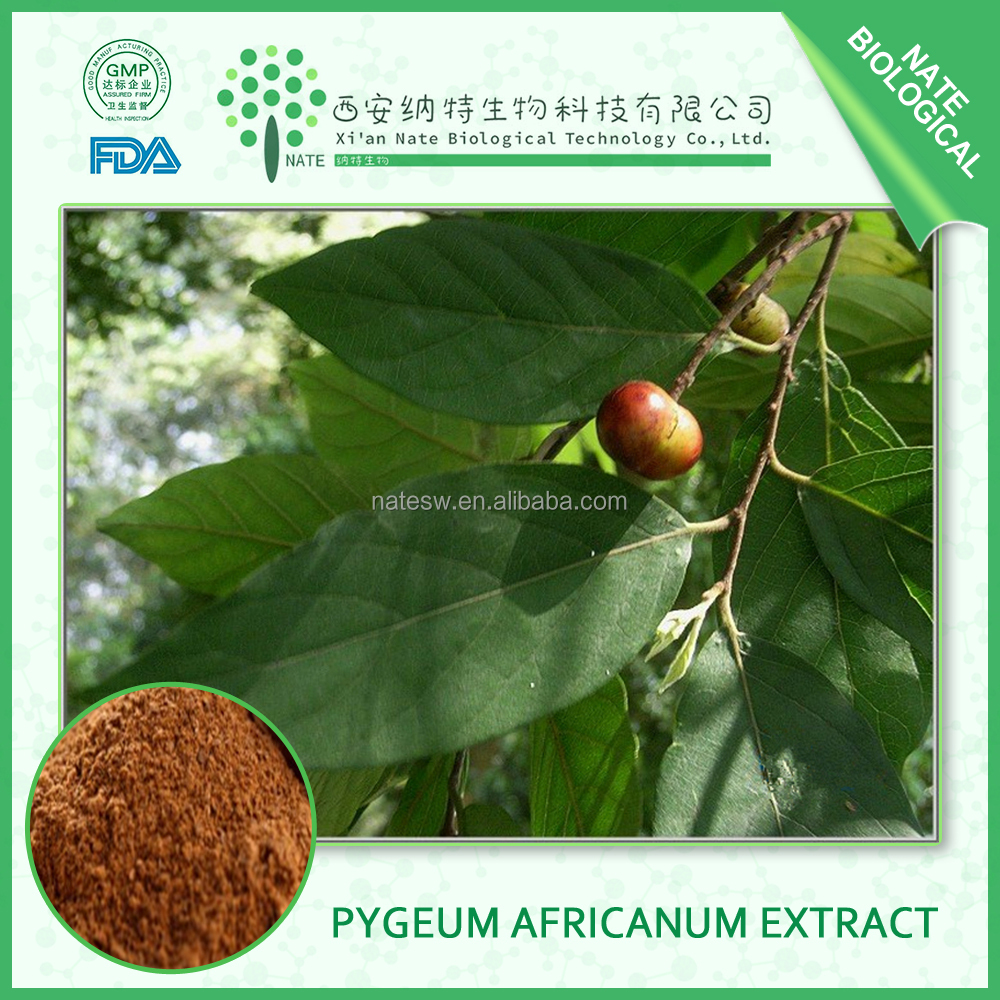 High quality Pygeum Africanum Extract ,Pygeum, Beta-sitosterol 2.5%