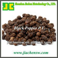 Supply Black Pepper P.E. with piperine 98%