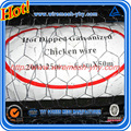 rabbit wire netting galvanised 1200x31x50mts 19g