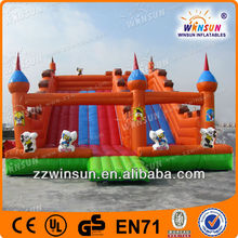 Fun Amusement Park CE inflatable tropical water slide