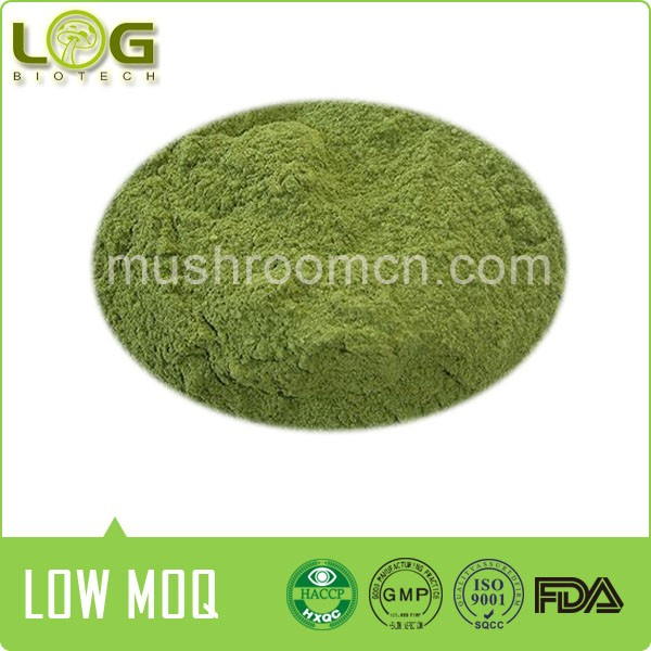 Hot sale 100% real natural wasabi japonica rhizome powder