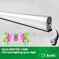 Brand-new double lens Led grow light,75W led rigid supplemental lighting