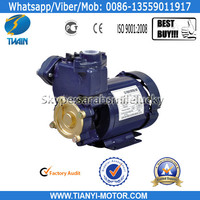 Thermal Protector Water Pump Electric 220V