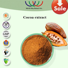 Cocoa extract,Pure Natural black cocoa powder from cocoa bean,10% therobromine&40% polyphenols cocoa extract