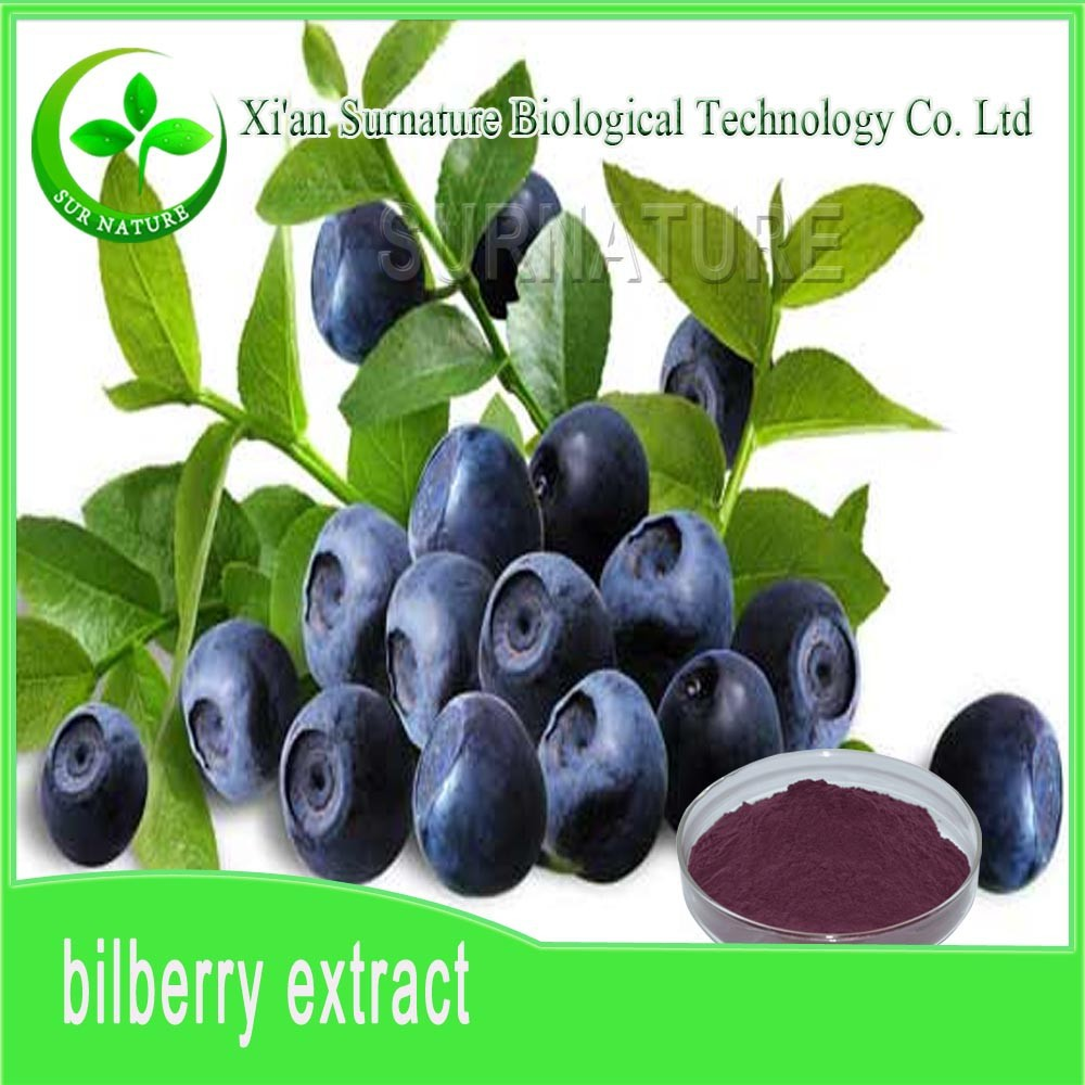 Wholesale Bilberry extract powder for Bilberry juice
