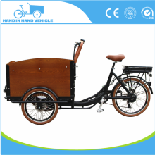 front loading cargo tricycle