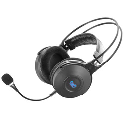 Hot selling USB 5.1 computer use branded headset with strong bass vibration