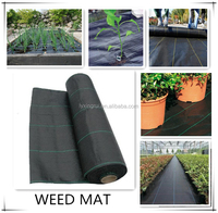 high quality black plastic ground cover