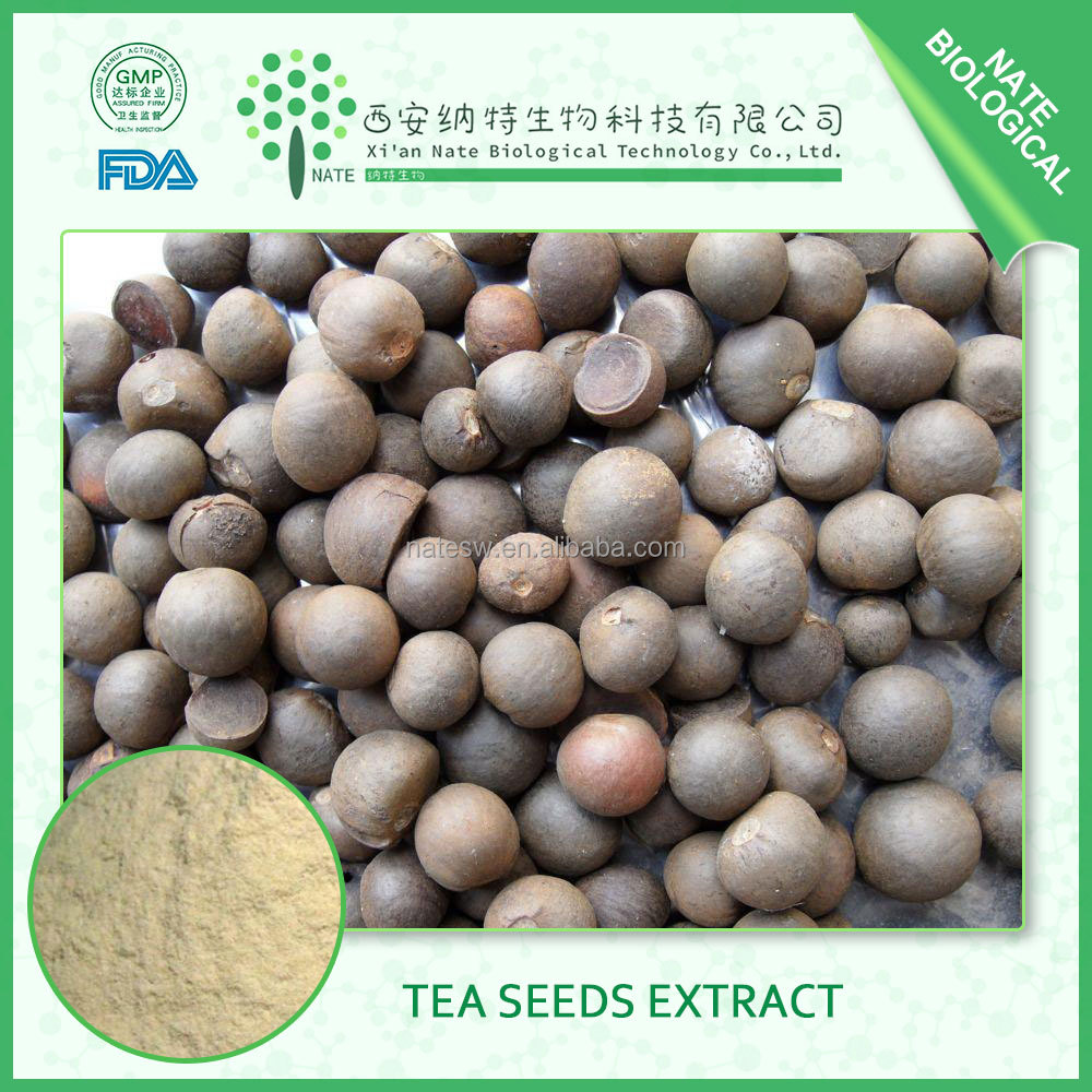 China supplier tea seed extract Tea saponin 95% 98% seed extract BEST quality