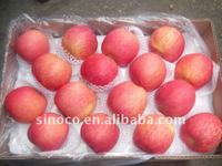 Chinese Red Fuji Apple in 20kg carton