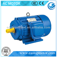 Y Series Three Phase dayang motor
