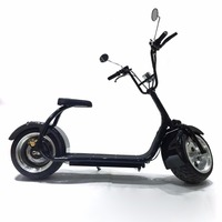 2016 Best Selling Electric Scooters Self Balancing Scooter Citycoco E Scooter With Big Wheels For Off Road Electric Motorcycle