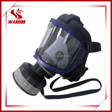 Single canister chemical gas respirator