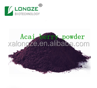Purple Organic Acai Berry Extract ISO Certified factory Acai Berry powder