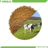 salinomycin for cow Veterinary Medicine made in china
